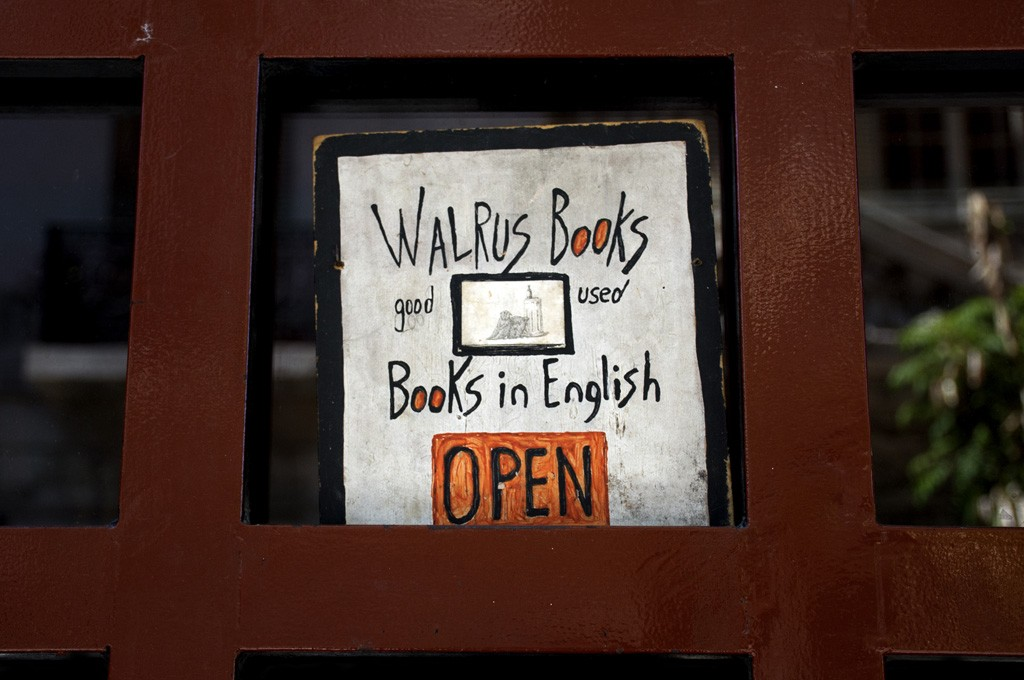 walrus-03