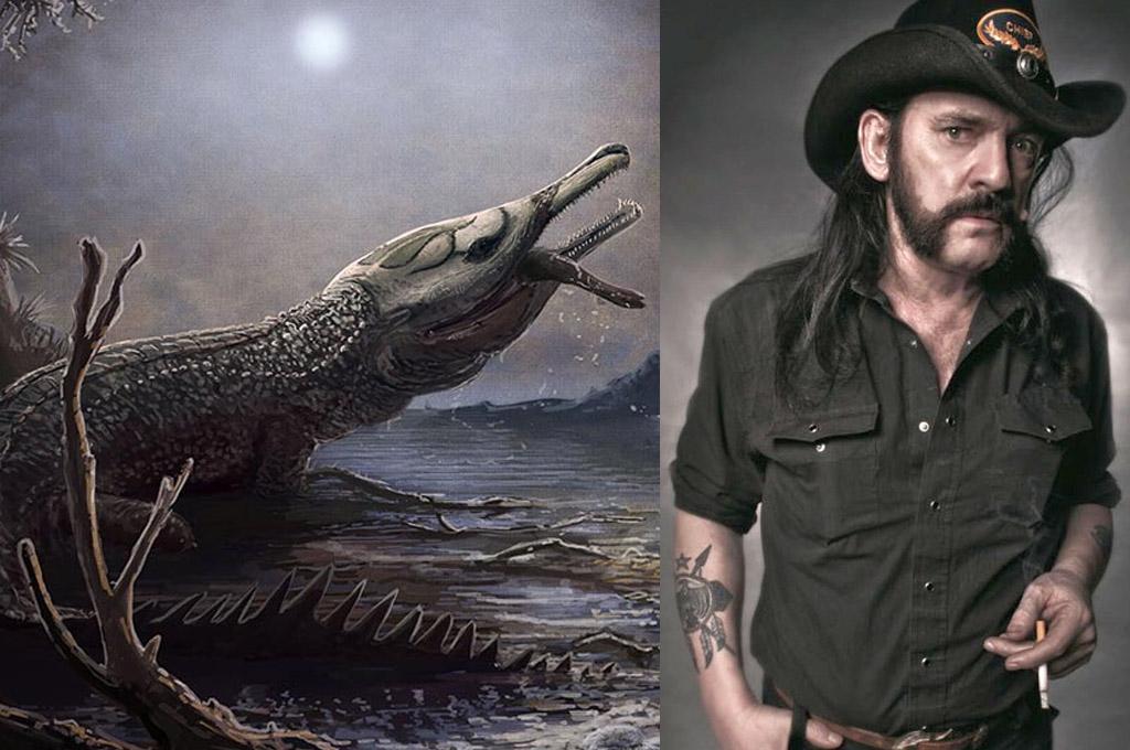 Un cocodrilo prehistórico llamado Lemmy ¿Qué?